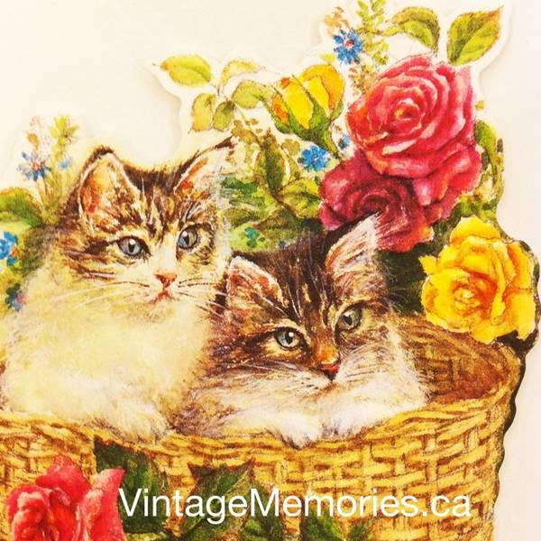 Designer greeting cards for cat lovers-1
