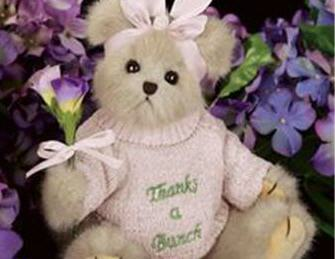 bearington teddy bear thanks
